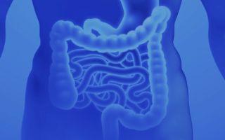 Болезнь Крона – симптомы, виды, причины, прогноз, диагностика