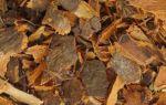 Полезные и вредные свойства крушины — состав, описание, противопоказания